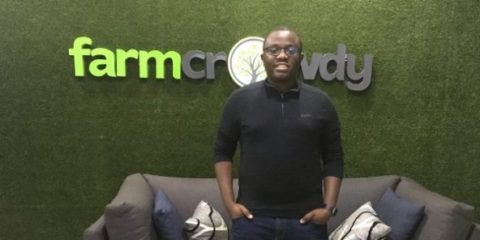 Trustee : Start-up de la semaine : au Nigeria, Farmcrowdy sponsorise des exploitations agricoles